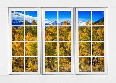 Colorado Autumn Landscapes Photograph - Independence Pass Autumn Colors White Window Frame View by James BO  Insogna