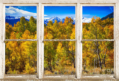 Aspen Trees Photograph - Independence Pass Autumn Colors Window View by James BO  Insogna