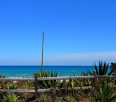 Art Print featuring the photograph Indialantic By The Sea by Kay Gilley