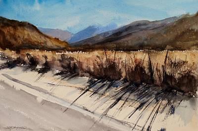Tumbleweed Painting - Indian Canyon Blues Study Three by Sandra Strohschein
