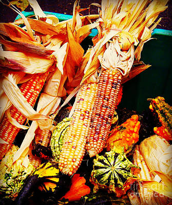 Photograph - Indian Corn - Harbinger Of Fall by Miriam Danar