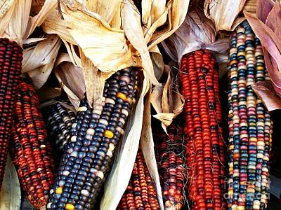 Photograph - Indian Corn by Sarah Loft