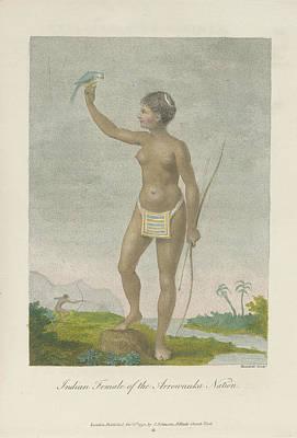 Indian Female Of The Arrowauka Nation Art Print