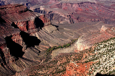 Photograph - Indian Gardens Grand Canyon by Aidan Moran