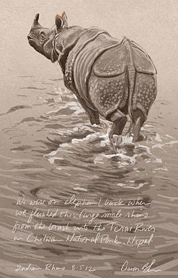 Indian Rhino Print by Aaron Blaise