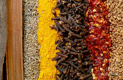 Photograph - Indian Spices by Paul Cowan