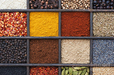 India Photograph - Indian Spices by Tim Gainey