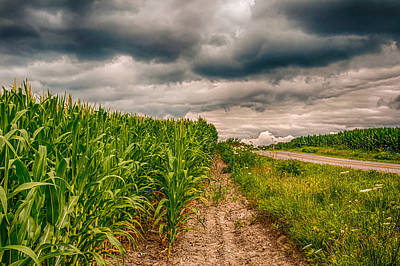 Photograph - Indiana - Corn Country by Gene Sherrill