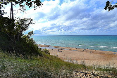 Nature Photograph - Indiana Dunes Beachscape by Amy Lucid