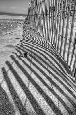 Photograph - Indiana Dunes by Daniel Sheldon
