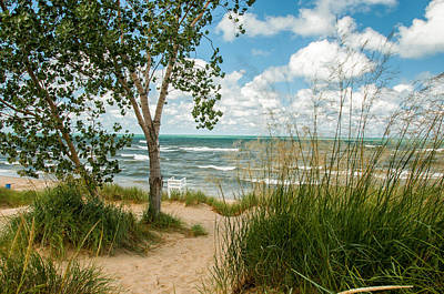 Photograph - Indiana Sand Dunes State Park by Gene Sherrill