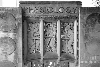 Indiana University Myers Hall Physiology Art Print by University Icons
