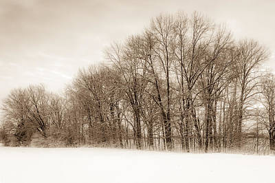 Photograph - Indiana Winter At Freedom Park - Horizontal by Ron Pate