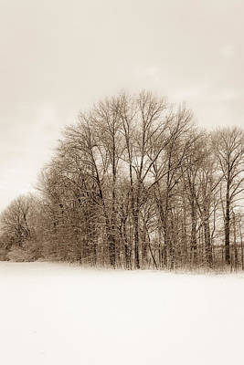 Photograph - Indiana Winter At Freedom Park - Vertical by Ron Pate