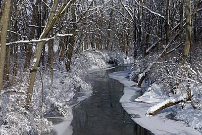 Indiana Winter Art Print by Thomas Fouch