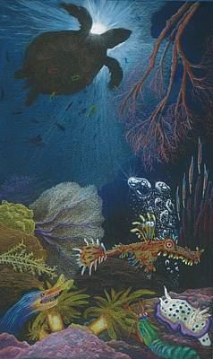 Beth Dennis Drawing - Indigenous Aquatic Creatures Of New Guinea by Beth Dennis
