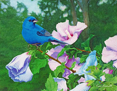 Indigo Bunting  Original by Ken Everett
