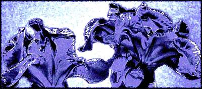 Abstract Digital Digital Art - Indigo Irises by Will Borden