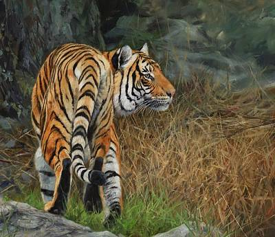 Wildlife Landscape Painting - Indo-chinese Tiger by David Stribbling