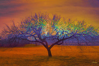 Photograph - Ineffable Tree by Kat Besthorn