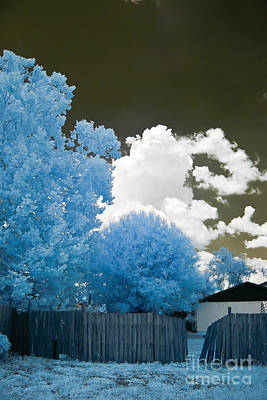 Photograph - Infrared Broken Fence by Jared Shomo