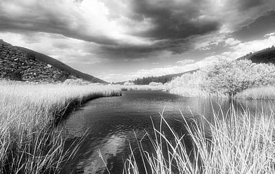 Photograph - Infrared Green Creek by Frank Lee Hawkins