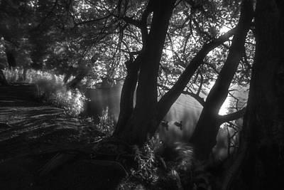 Water Droplets Sharon Johnstone - Infrared Morning Pond Scene by Sven Brogren