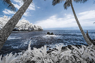 Photograph - Infrared Onomea Bay by Jason Chu