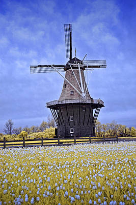 Netherlands Windmill Photograph - Infrared Photo Of The Dezwaan Dutch Windmill On Windmill Island In Holland Michigan by Randall Nyhof