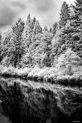 Infrared Trees Art Print