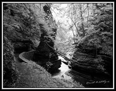 Infrared Upper Buttermilk Falls 16 Original by David Blatchley