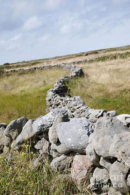 Digital Art - Inis Mor Fields Of Stone by Danielle Summa