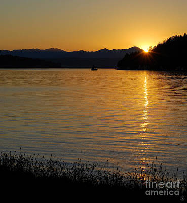 Photograph - Hood Canal Twilight by Susan Parish