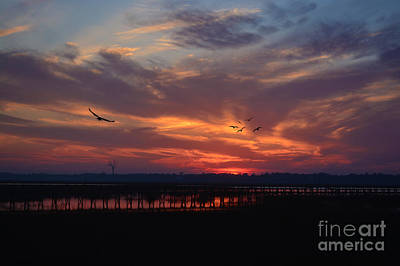 Photograph - Inlet Sunrise by Kathy Baccari