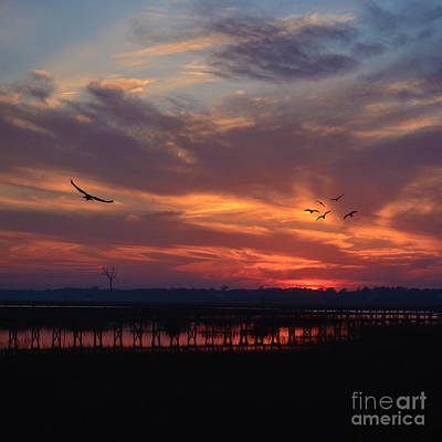 Photograph - Inlet Sunset Throw Pillow by Kathy Baccari