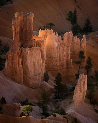 Photograph - Inner Light by Dwight Theall