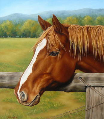 Painting - Inquisitive by Margaret Stockdale
