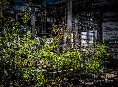 Photograph - Inside An Abandon Building 2 by Ronald Grogan