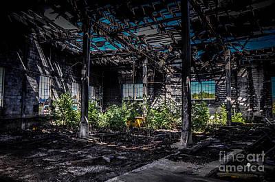 Photograph - Inside An Abandon Building by Ronald Grogan