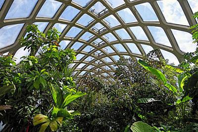 Photograph - Inside At Denver Botanic Gardens by Ann Powell