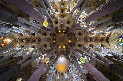 Photograph - Inside Gaudi's Dream by Jack Daulton