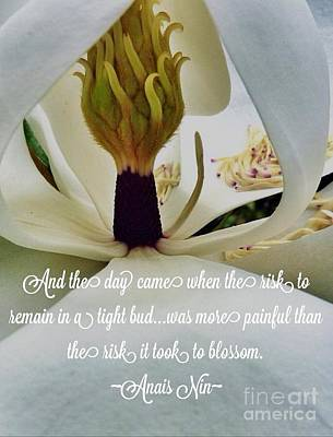 Photograph - Inside Magnolia Quote by Susan Garren