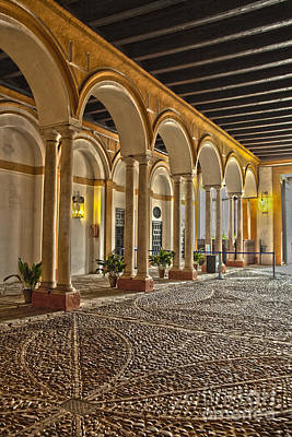 Photograph - Inside The Alcazar Reales In Seville by Patricia Hofmeester
