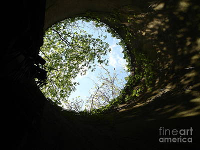 Art Print featuring the photograph Inside The Silo by Jane Ford