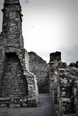 Photograph - Inside The Walls At Clare Abbey by Nadalyn Larsen
