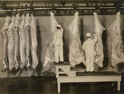 Inspection Of Animal Carcasses, 1910 Art Print