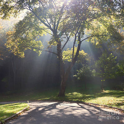 Inspirational Scene Sun Streaming Fog Square Art Print