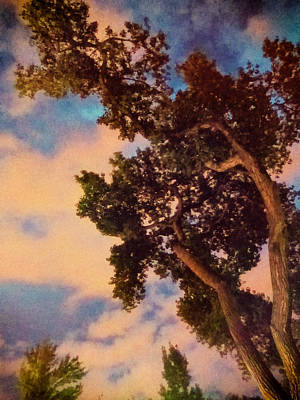 Inspired By Maxfield Parrish Art Print