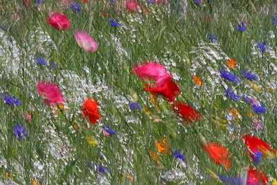 Photograph - Inspired By Monet by Juergen Roth