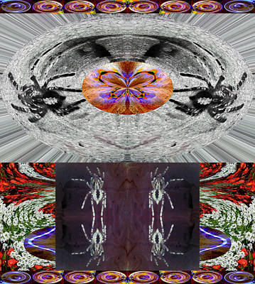 Inspiring Trust Spider - Spirit 2013 Art Print by James Warren
